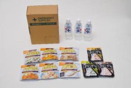 災害備蓄用1人3日分9食セット×12 尾西食品アルファ米 人気6種+携帯おにぎり3種セット